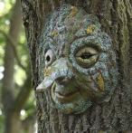Meg Amsden Oak Dryad